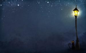 lantern night cat art