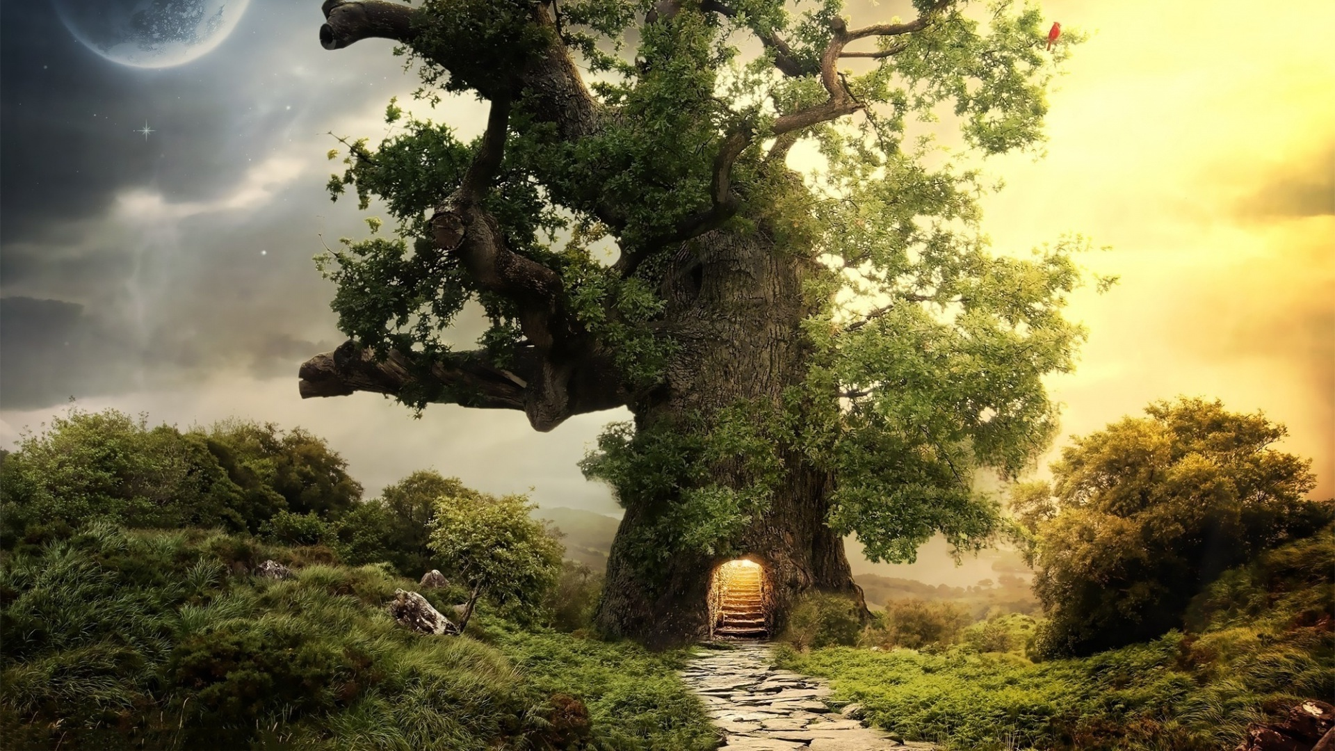 Fantasy house tree