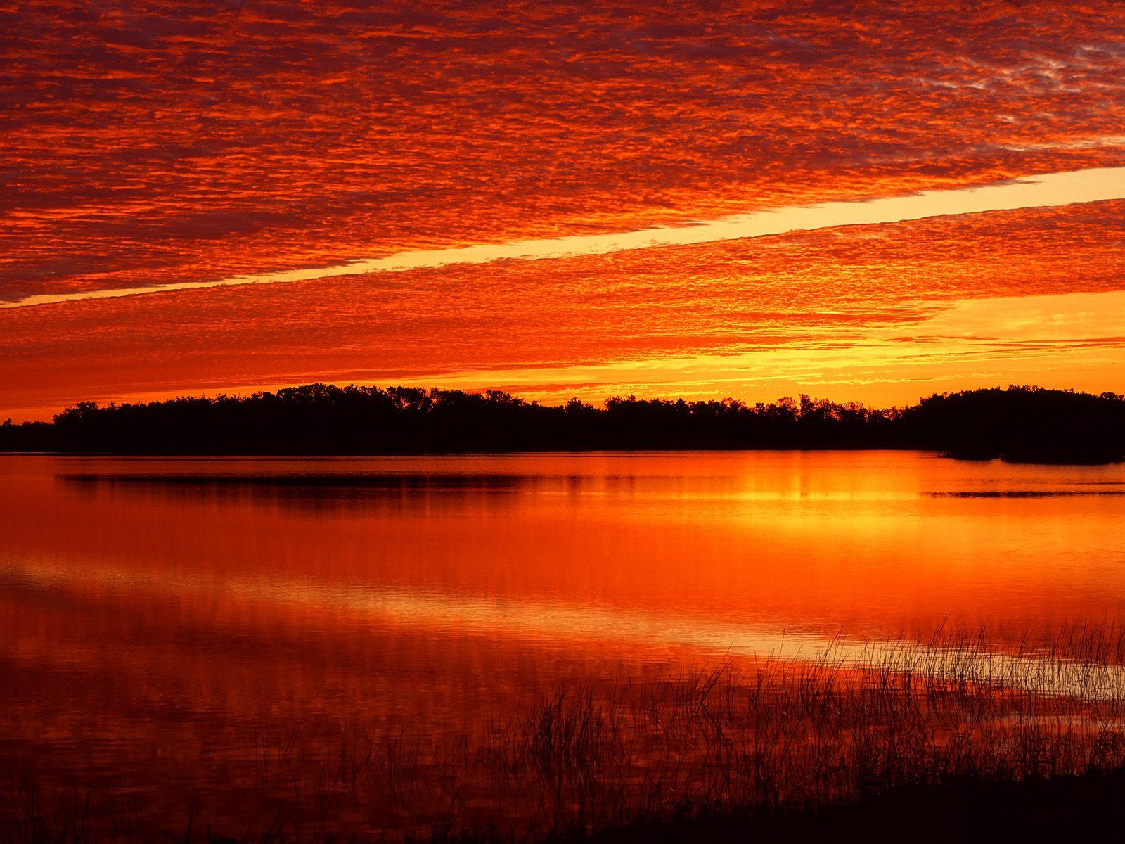 Nine Mile Pond at Sunrise, Everglades, Florida