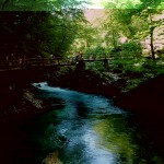 park river