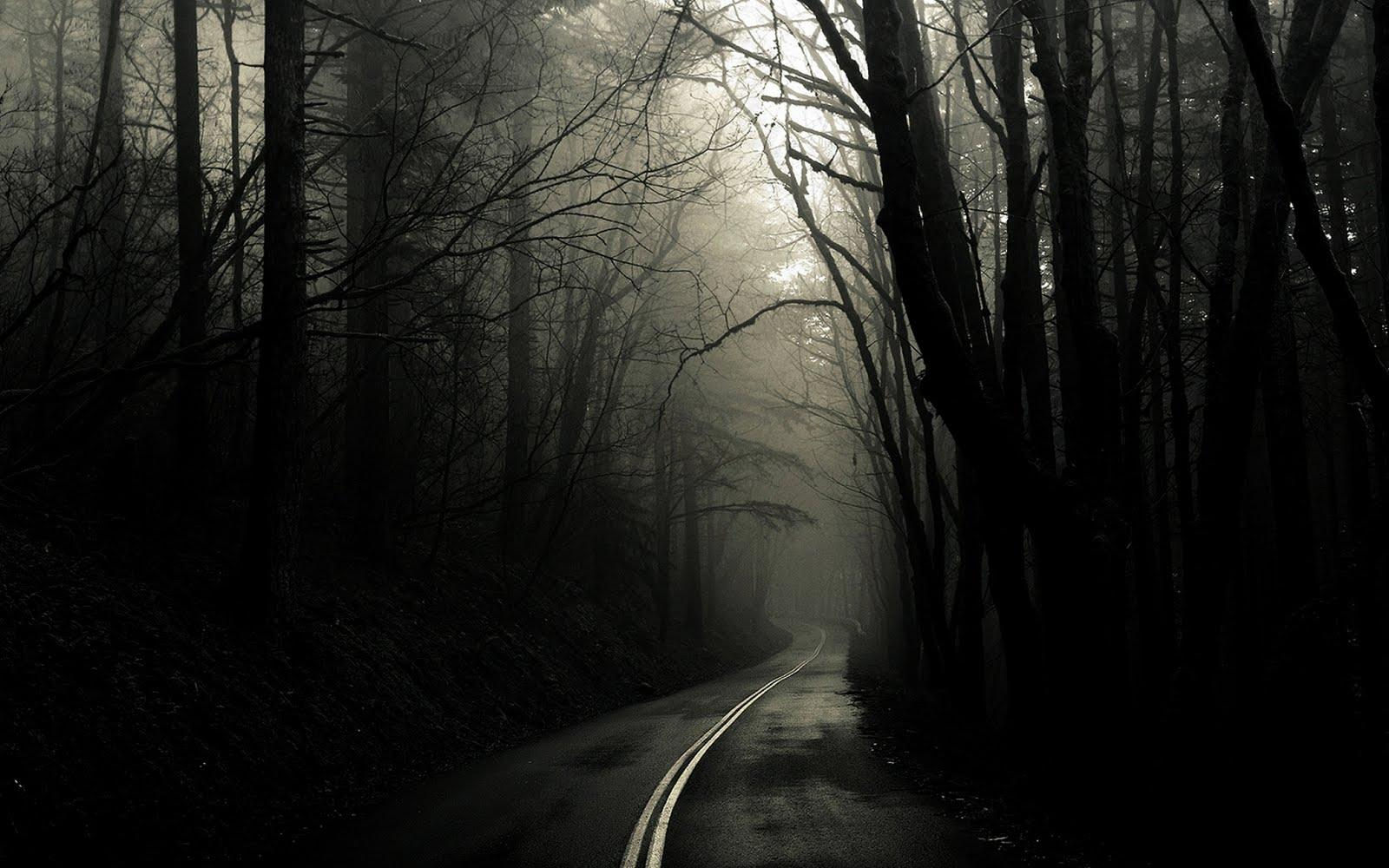 the dark forest road