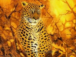 Fantasy Art Animal Leopard