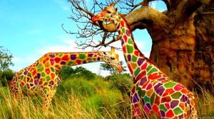 Giraffe Colored